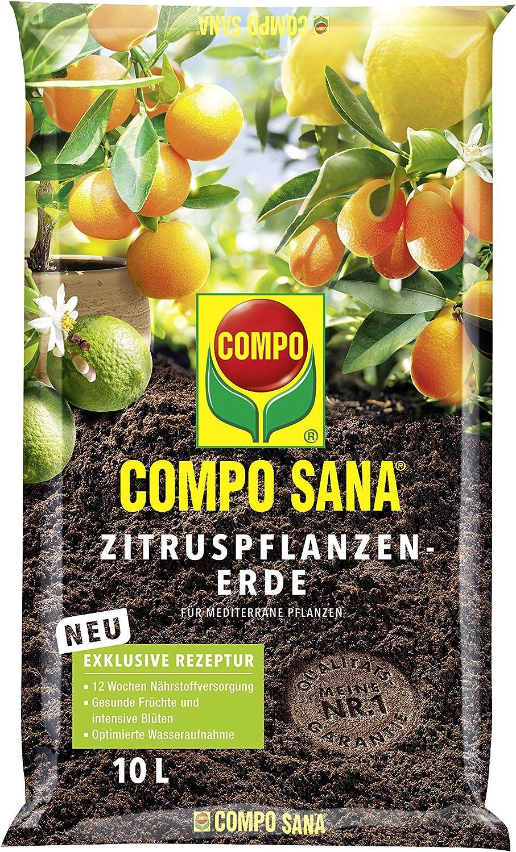 Compo 11671 - Sana árboles de cítricos Tierra, 10 l