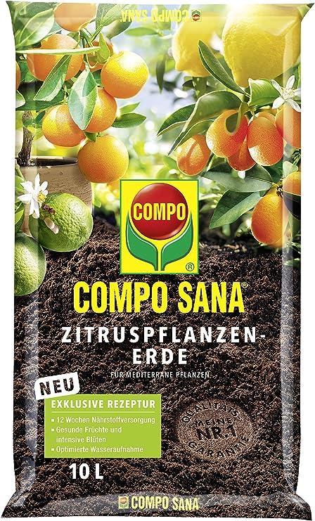 Compo 11671 - Sana árboles de cítricos Tierra, 10 l: Amazon.es: Jardín