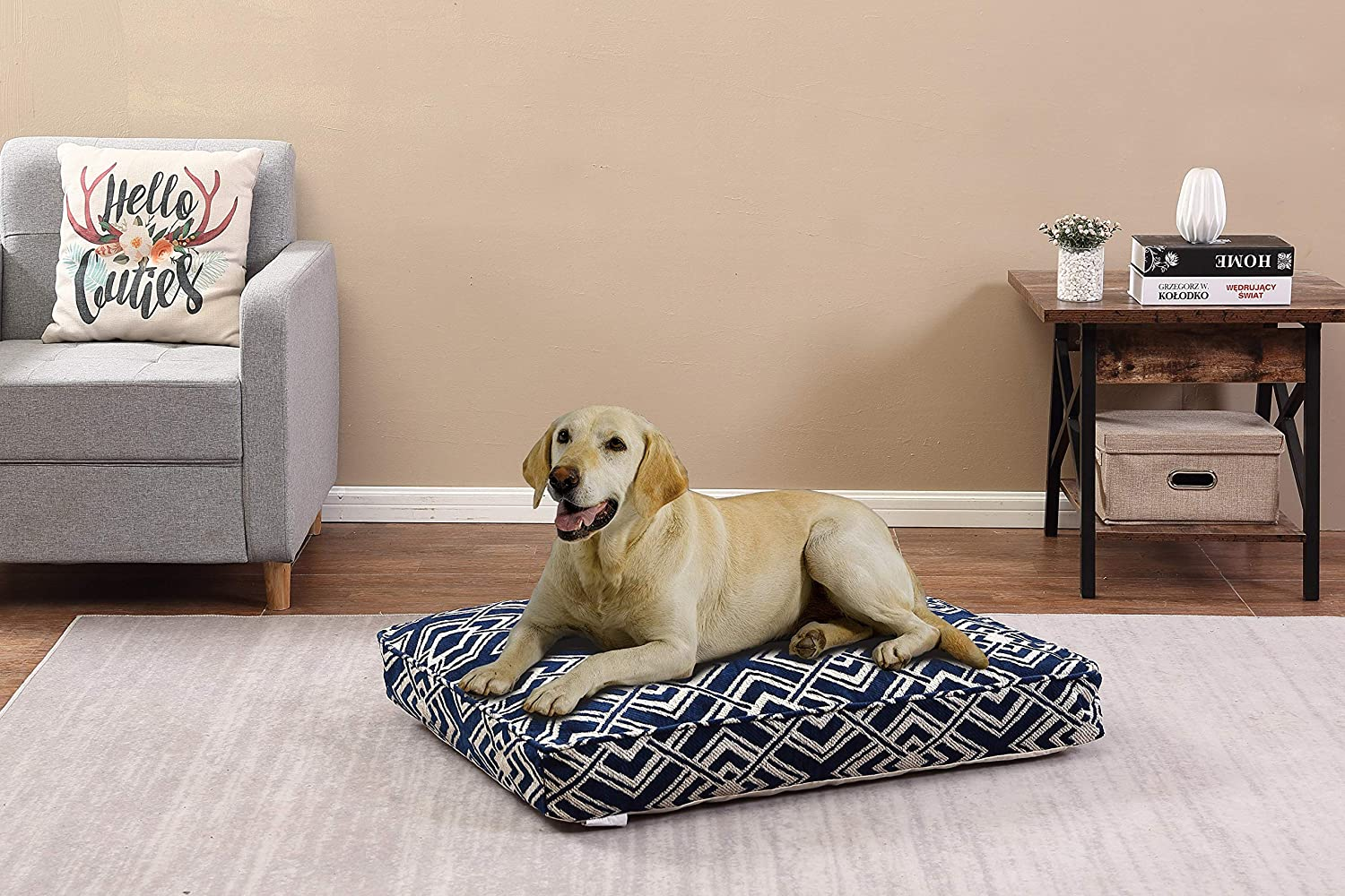 Beatrice Home Fashions India PET Pillow 26x36x4 Eternity