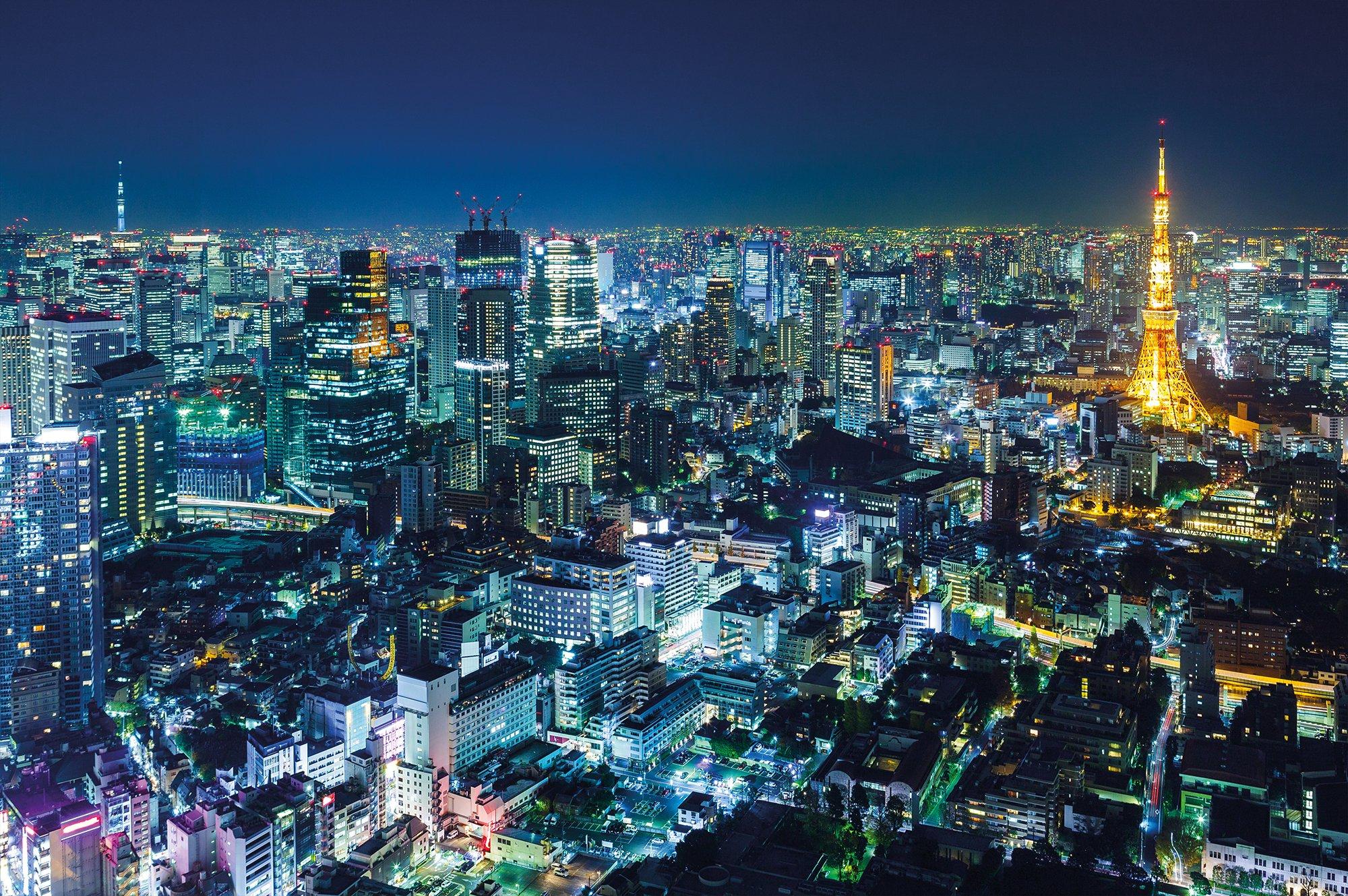 Wallpaper Tokyo City Mural Decoration Skyline Night Metropolis Tower Panorama Picture Japan Cosmopolitan
