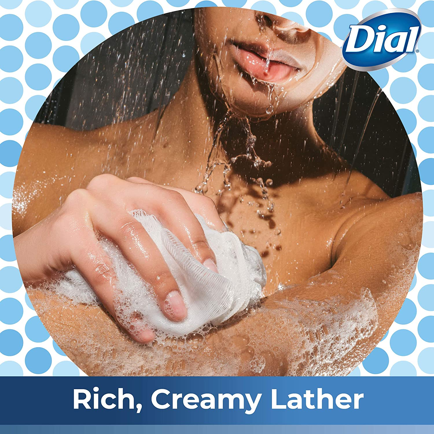 Dial Body Wash, Spring Water, 23 Oz (Pack Of 3) : Beauty
