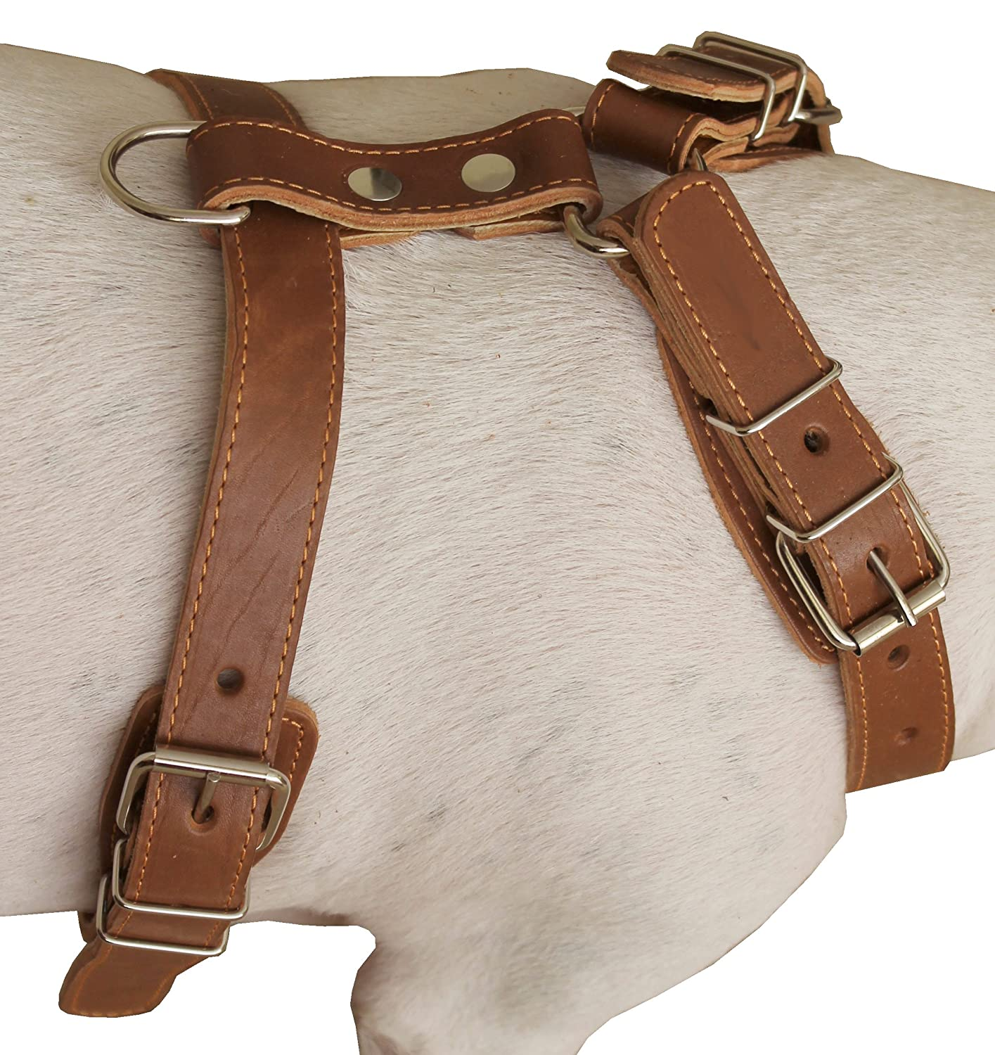Genuine Leather Dog Harness 25-30 Chest 1 Wide Adjustable Straps for Medium and Large Dogs