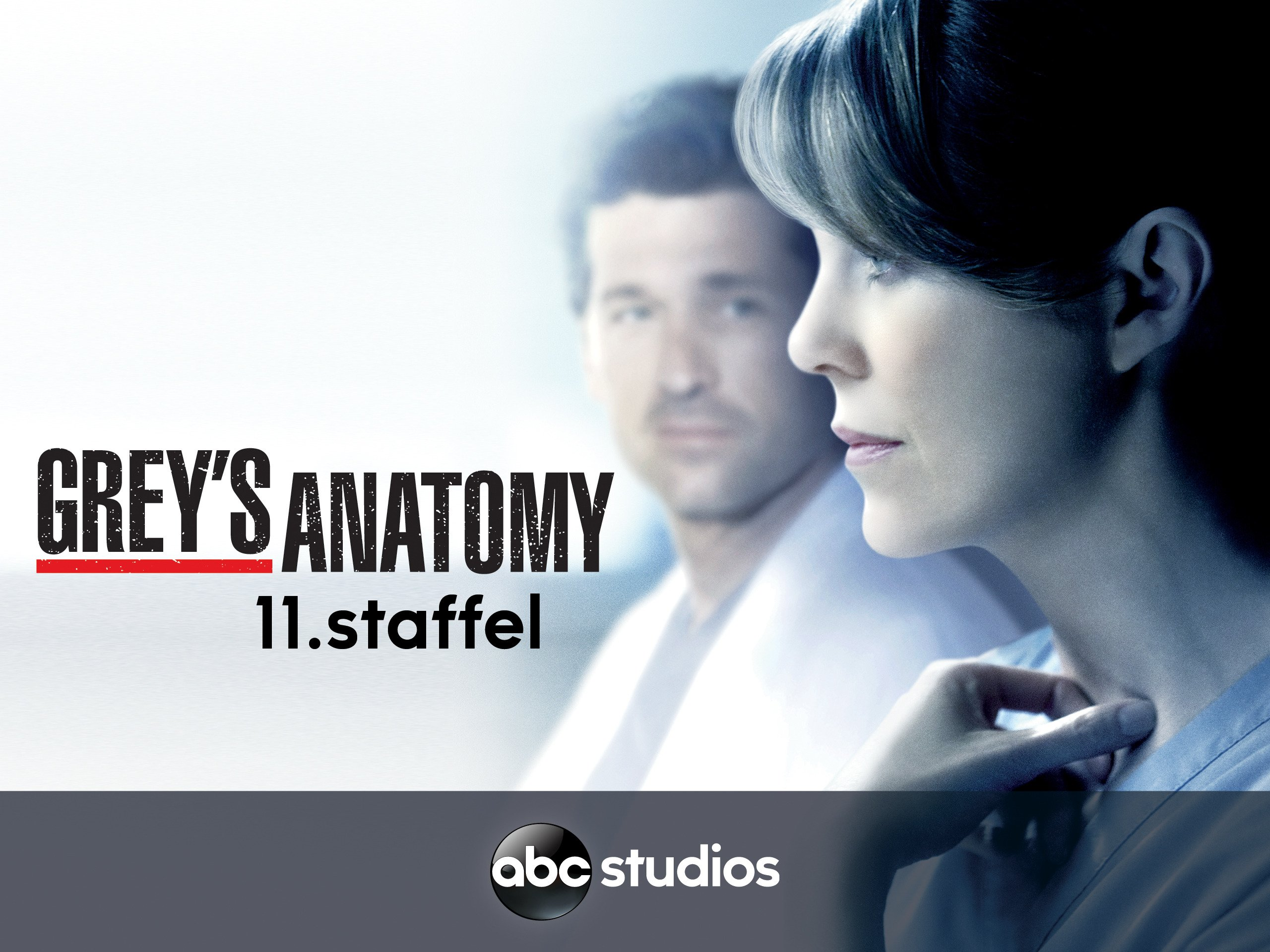 Grey\'s Anatomy - Staffel 11 [OmU] online schauen und streamen bei ...