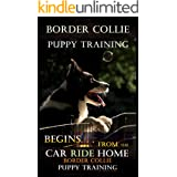 Border Collie Puppy Training Begins . . . From the Car Ride Home: Border Collie Puppy Training