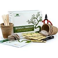 Kit albero bonsai, cresci il tuo albero bonsai a partire dal seme – Il set regalo include 5 varietà di alberi da piantare – Coltivazione al chiuso con istruzioni dettagliate