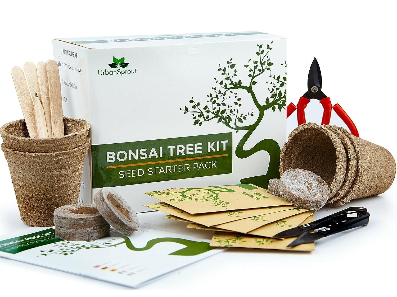 Bonsai Samen Anzuchtset - Züchten Sie Ihren eigenen Bonsaibaum mit Hilfe von Samen – Das Geschenkset beinhaltet 5 Baumvarianten zur Aufzucht drinnen – Mit bonsai schere Urban Sprout