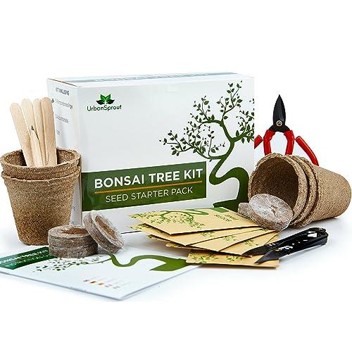 Kit Arbre de Bonsaï - Kit prêt-à-pousser arbre Bonsaï à partir de graines - Cet ensemble cadeau comprend 5 variétés d'arbres à planter