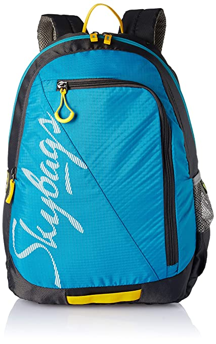 49809bd12c1 Skybags Blue Casual Backpack (BPGRO5ELBU)  Amazon.in  Bags
