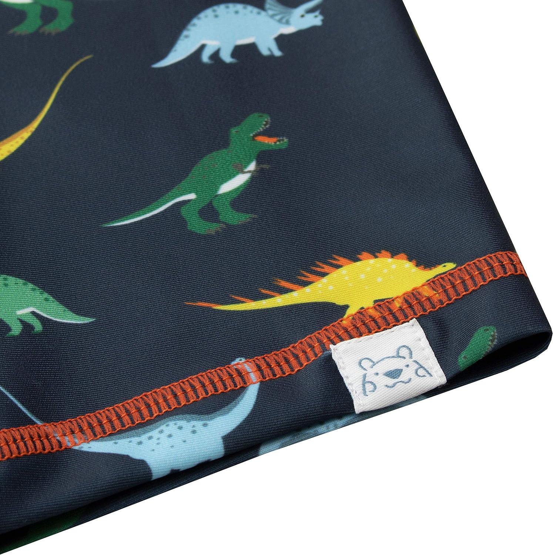 Harry Bear Boys Dinosaur Two Piece Swim Set