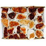 "Citrine Cluster Flat Box - Box Size 7.5x5x2"" - Brazilian Crystals - Crystal Collection - Reiki Crystals - Rock Paradise Exclusive COA (Citrine)"