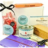 DELUXE S'MORES KIT - with Handmade Raspberry Marshmallows and Organic milk chocolate
