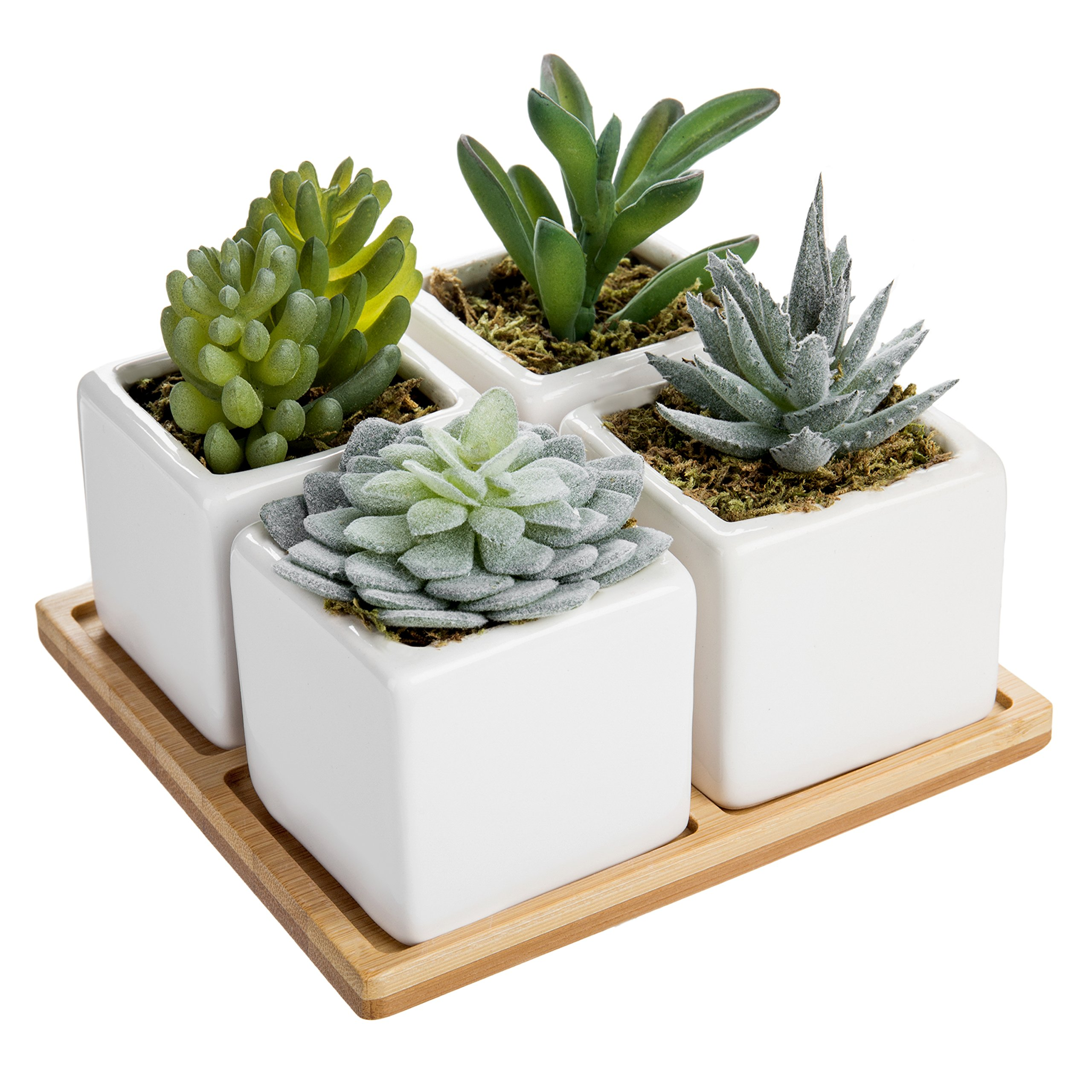 MyGift Set of 4 Mini Artificial Succulent Plants with Bamboo Display Tray