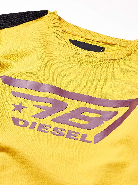 Diesel Willy Felpa da uomo
