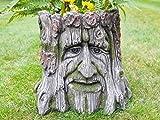 Novelty Tree Stump Garden Planter Wood Carved Face Effect Patio Yard Ornament Decorative Flower Pot