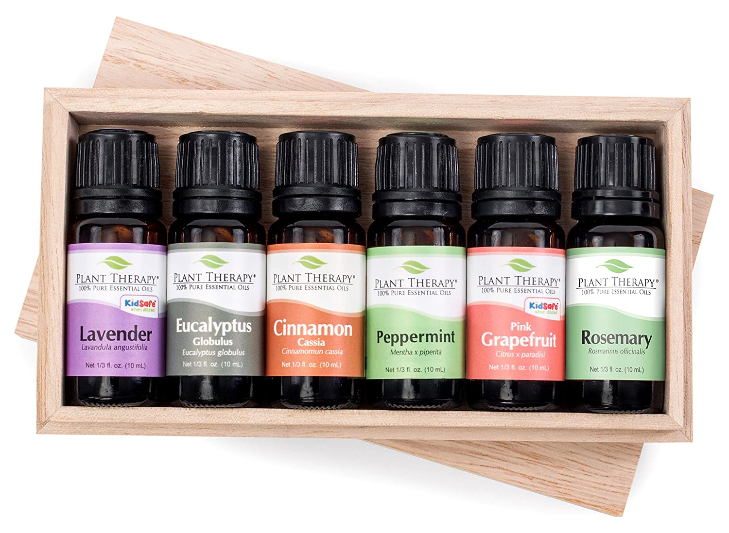 Plant Therapy Essential Oil Sampler Gift Set #2 (Lavender, Eucalyptus, Cinnamon Cassia, Peppermint, Rosemary and Grapefruit; 10 mL each) Plant Therapy Essential Oils