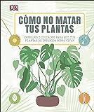 Cómo no matar tus plantas: Consejos y cuidados para que tus plantas sobrevivan