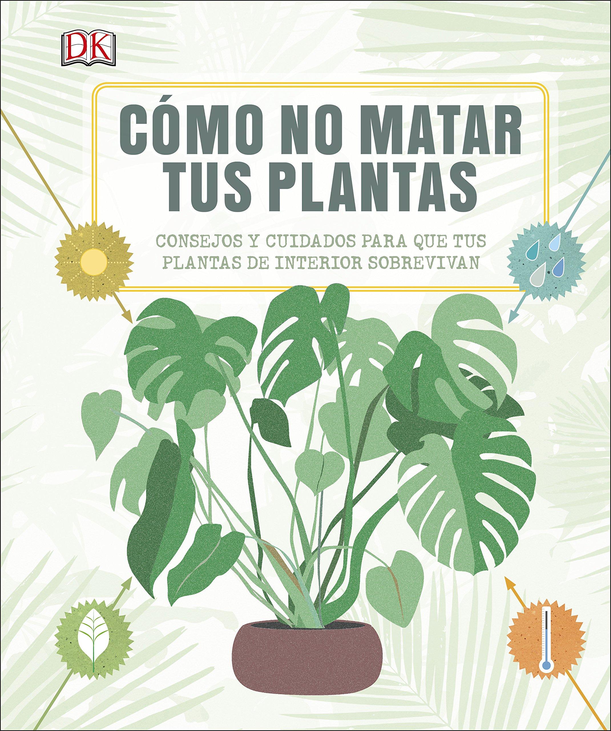 Cómo no matar tus plantas: Consejos y cuidados para que tus ...