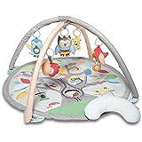 Skip Hop Treetop Friends Baby Activity Gym, Grey/Pastel