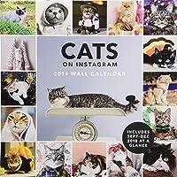 2019 Wall Calendar: Cats on Instagram