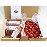 お試しセット 「おもいろトマト」(約600~700g)と「おもいろトマトジュース180ml」×3 ギフト 贈り物 贈答品 誕生日プレゼント 業務用に【父の日】