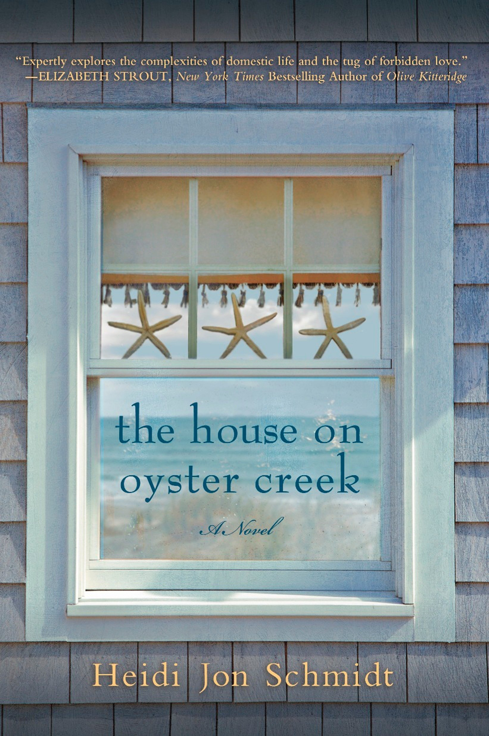 Download The House on Oyster Creek: A Novel pdf