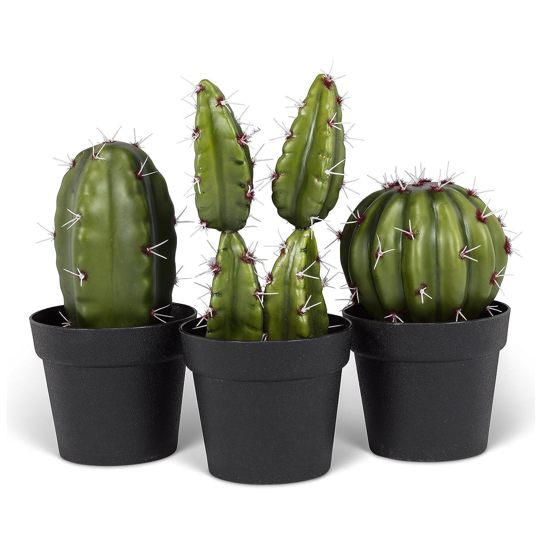 グリーンプラスチックのセット3 Cactus Inプランターポット8
