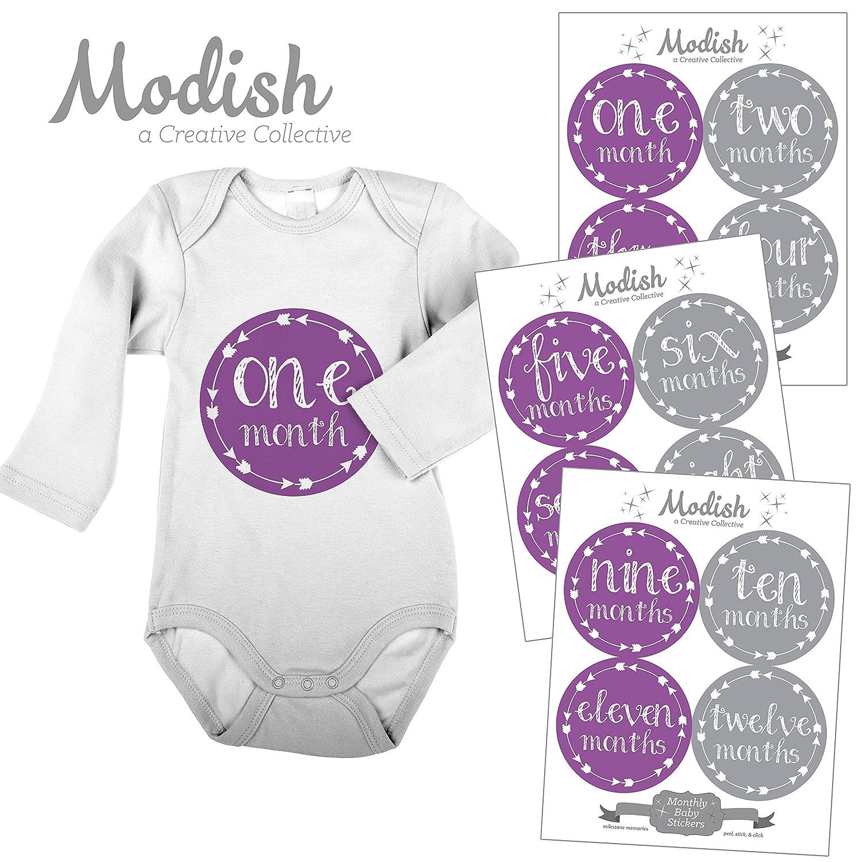 入荷中 12 Monthly by Baby Stickers, Baby Purple & Gray, Girl, Baby Arrows, Belly Stickers, Monthly Onesie Stickers, First Year Stickers Months 1-12, Purple, Grey, Arrows, Tribal, Baby Girl by Modish - Creative Collective B00XFQSVMU, 下高井郡:eb4cbad4 --- mvd.ee