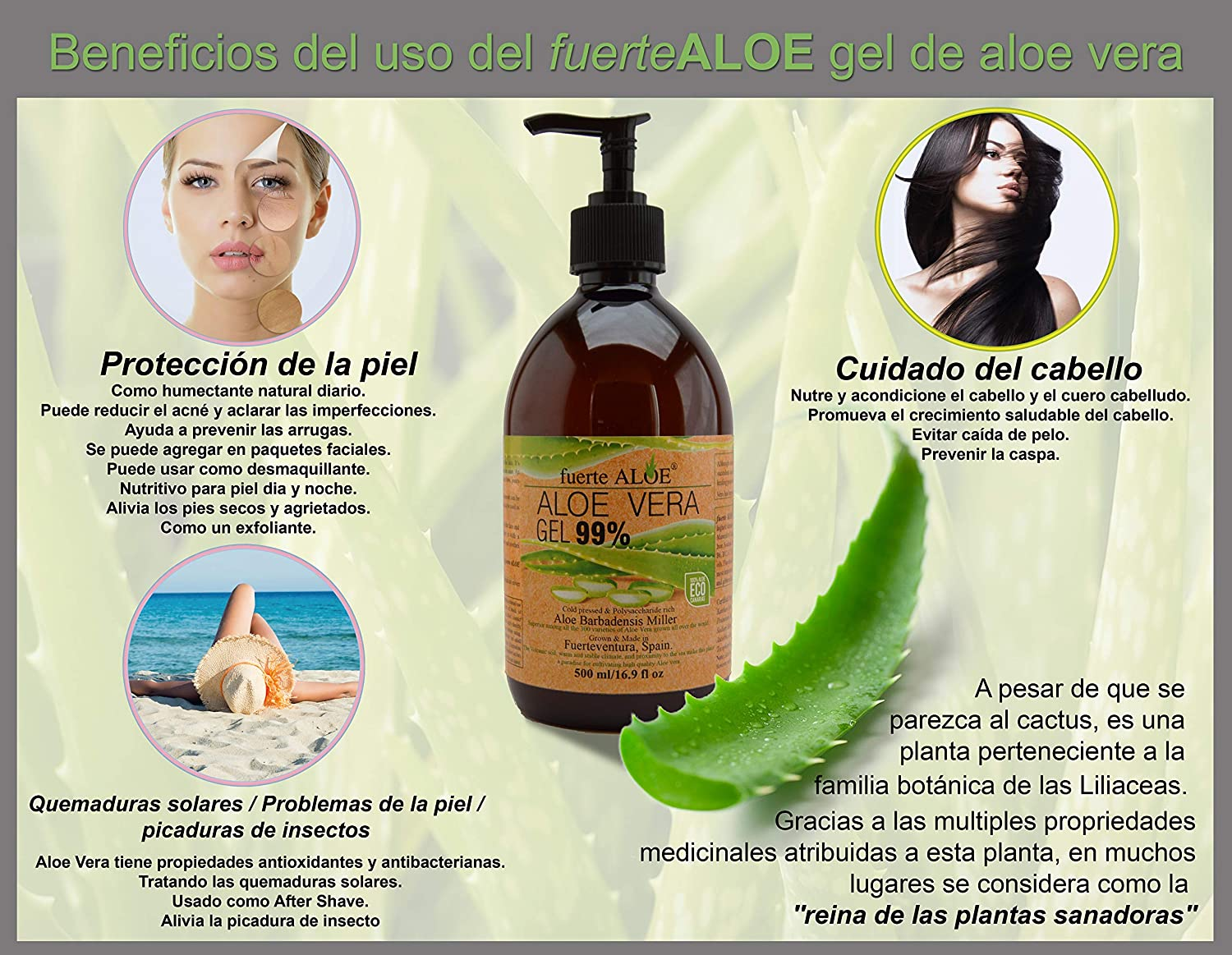 Amazon.com: fuerteALOE Aloe Vera gel 100% pure Organic 16.9 fl oz (500 ml): Beauty
