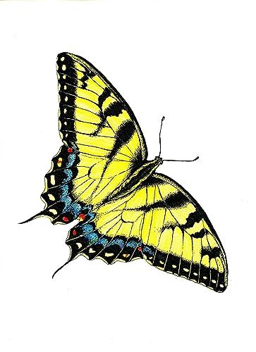 amazon com tiger swallowtail butterfly original decorative art