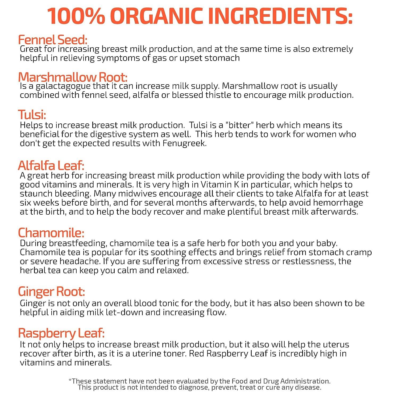 Natural Foods To Increase Breast Milk