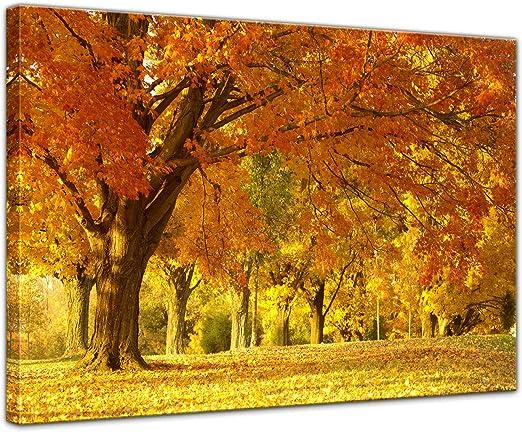 Bilderdepot24 Bild Auf Leinwand Herbst Szene In 40x30 Cm Als Wandbild Wand Deko Dekoration Wohnung Modern Bilder 202381 Küche Haushalt
