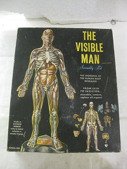 Amazon.com: Renwal The Visible Man Model Kit Black Box: Toys & Games