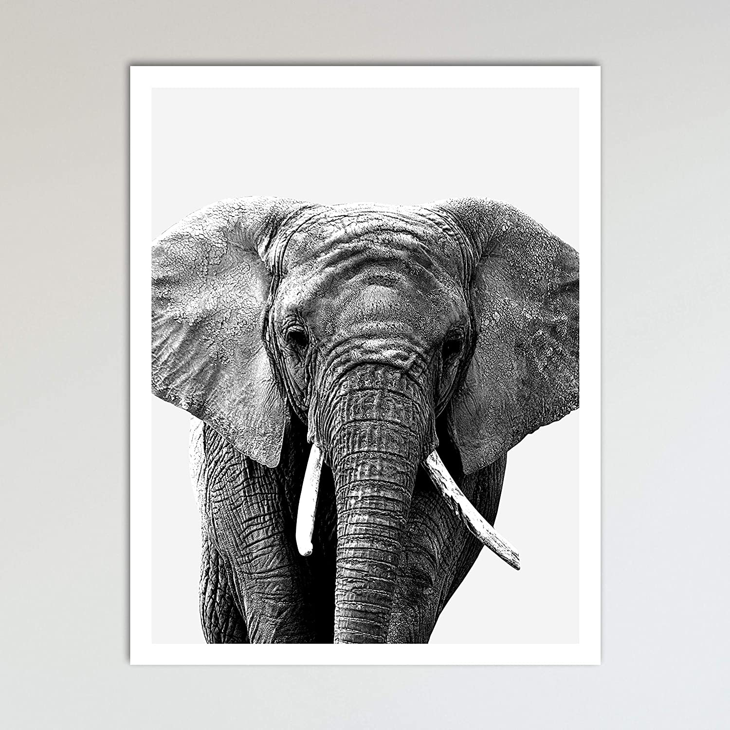 African Elephant Kids Room Wall Picture Art Print