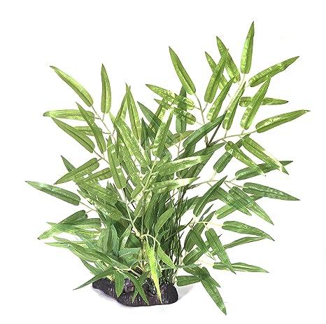 Pistachio Pet - Planta de acuario 35 cm bambú con base