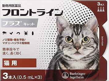 猫 フロント ライン