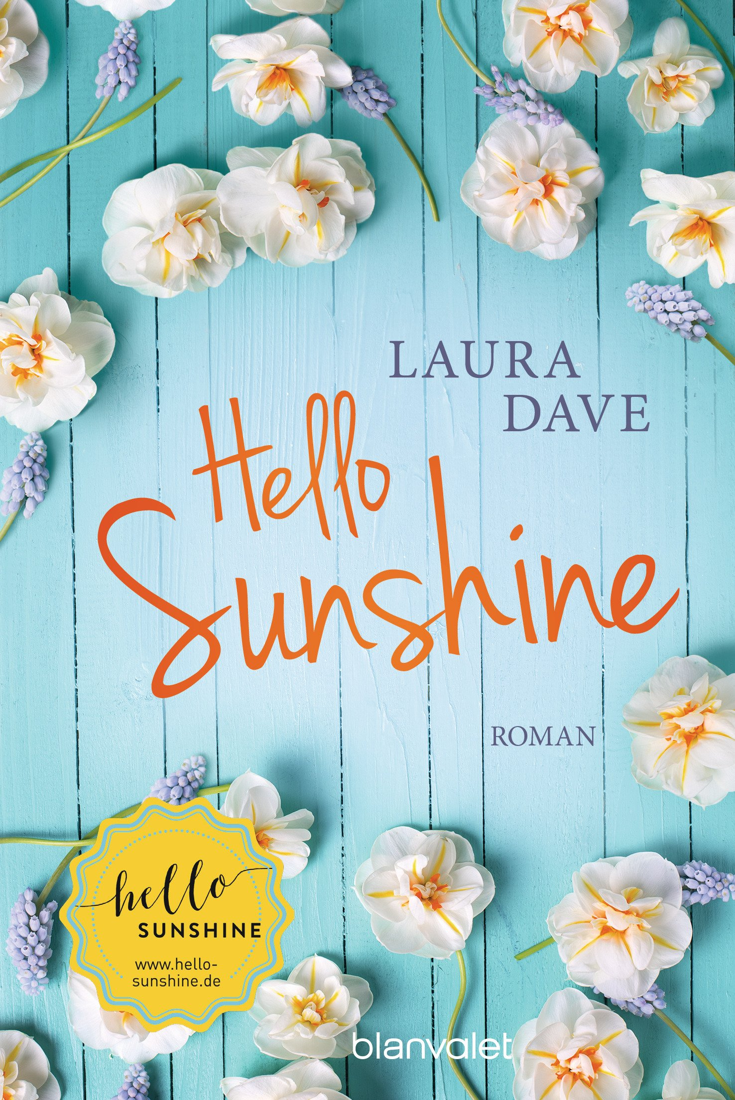 Hello Sunshine Laura Dave