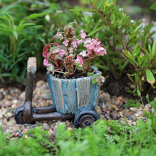 Miniatura Jardín de hadas maceta para bicicleta: Amazon.es: Jardín