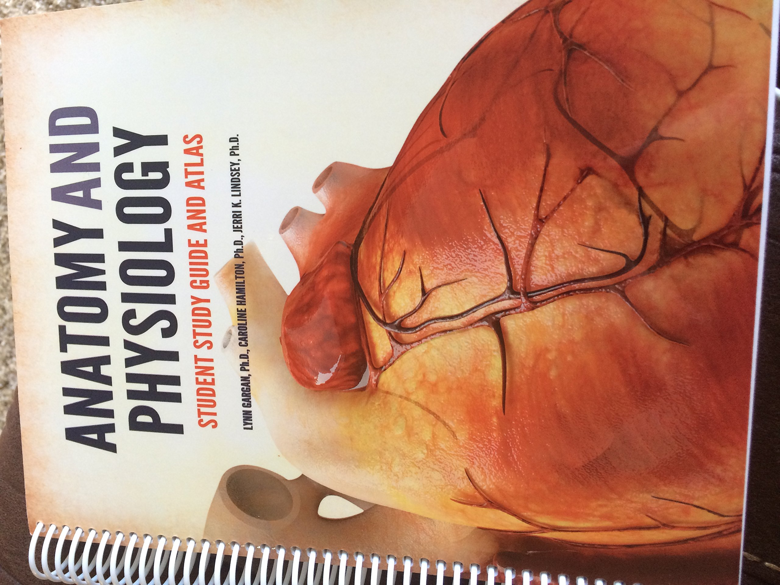 Anatomy and Physiology: Student Study Guide and Atlas: Ph.D ...