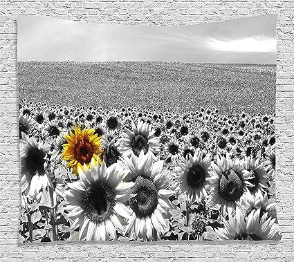 Amazoncom Ambesonne Modern Decor Tapestry By Sunflower Field