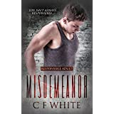 Misdemeanor (Responsible Adult Book 1)