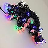 Pick Indiana Black Crystal Tree Shape Led String Light (7 M)