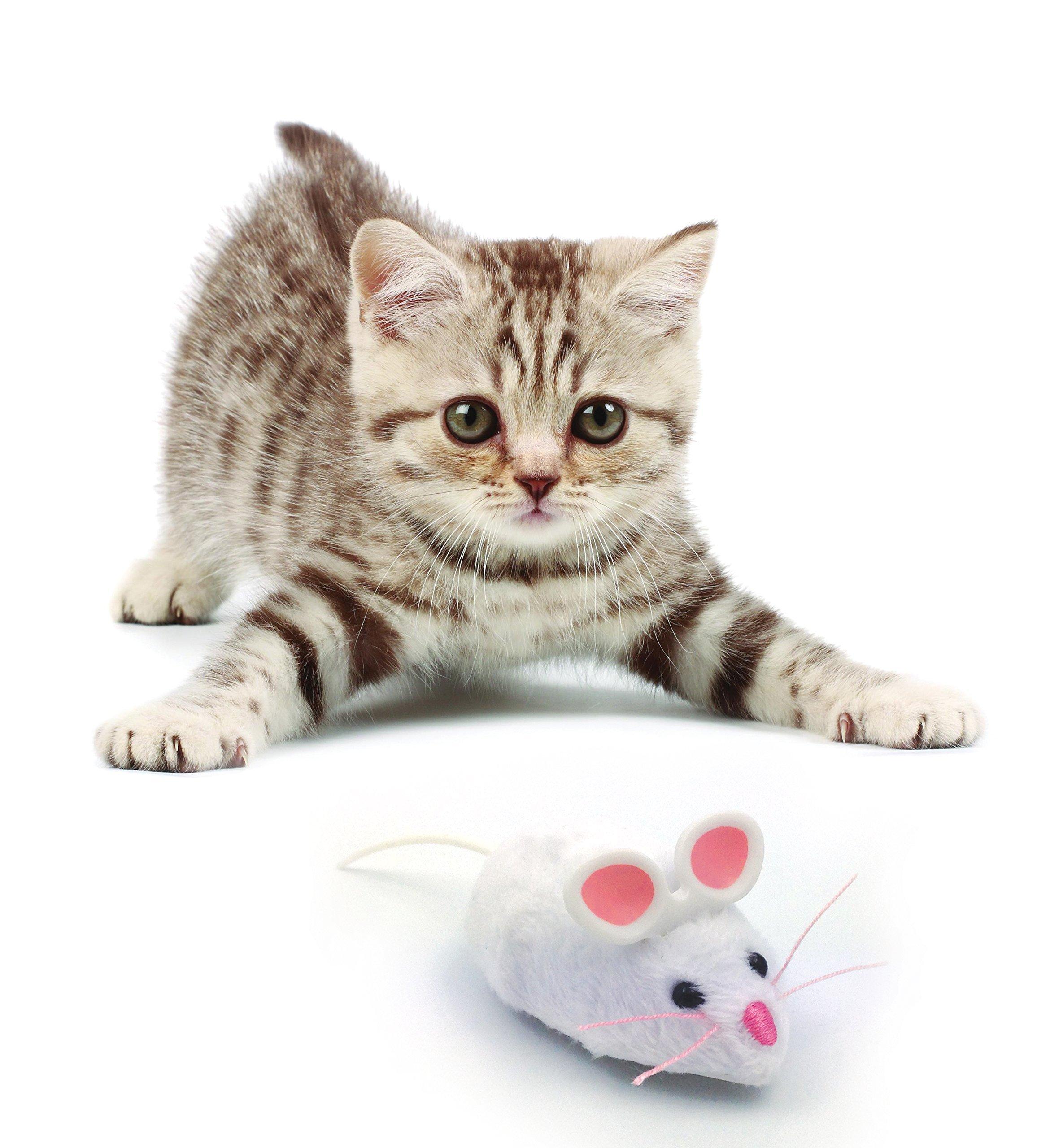 Hexbug Mouse Robotic Cat Toy - Random Color by HEXBUG (Image #3)