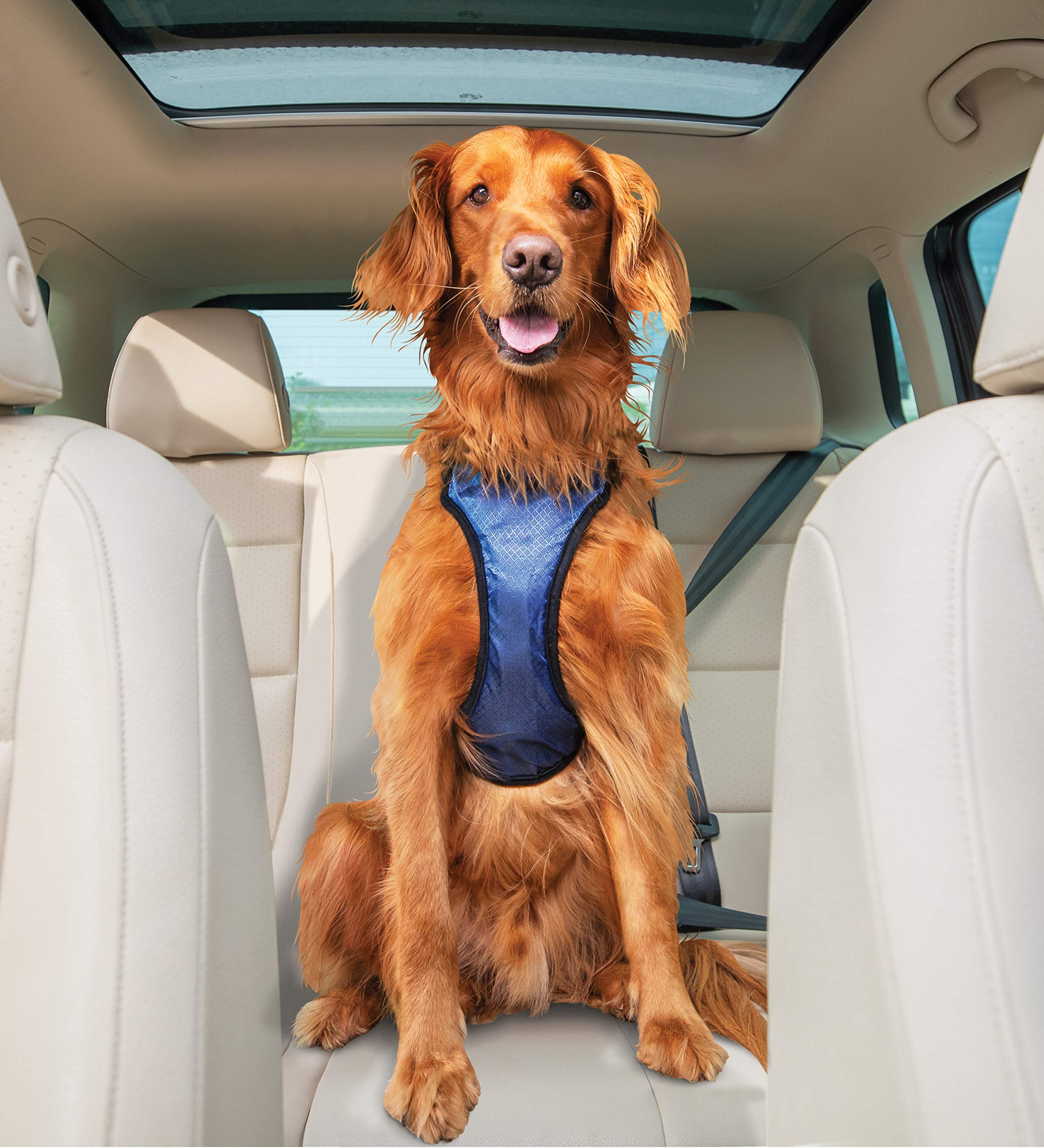 PetSafe Solvit Deluxe Car Safety Dog Harness, Adjustable Crash-Tested Dog Harness, Car Safety Seat Belt Tether Included
