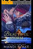 Beautiful Storm: A Sweet Christian Romance (Unfailing Love Book 4)