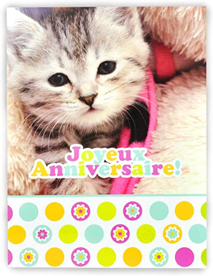Afie Mx 3003 Grande Carte Maxi A4 Joyeux Anniversaire Chaton Chat Mignon Felin Animal Amazon Fr Fournitures De Bureau