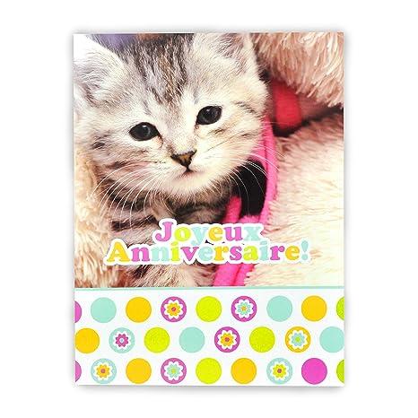 Afie Mx 3003 Grande Carte Maxi A4 Joyeux Anniversaire Chaton Chat