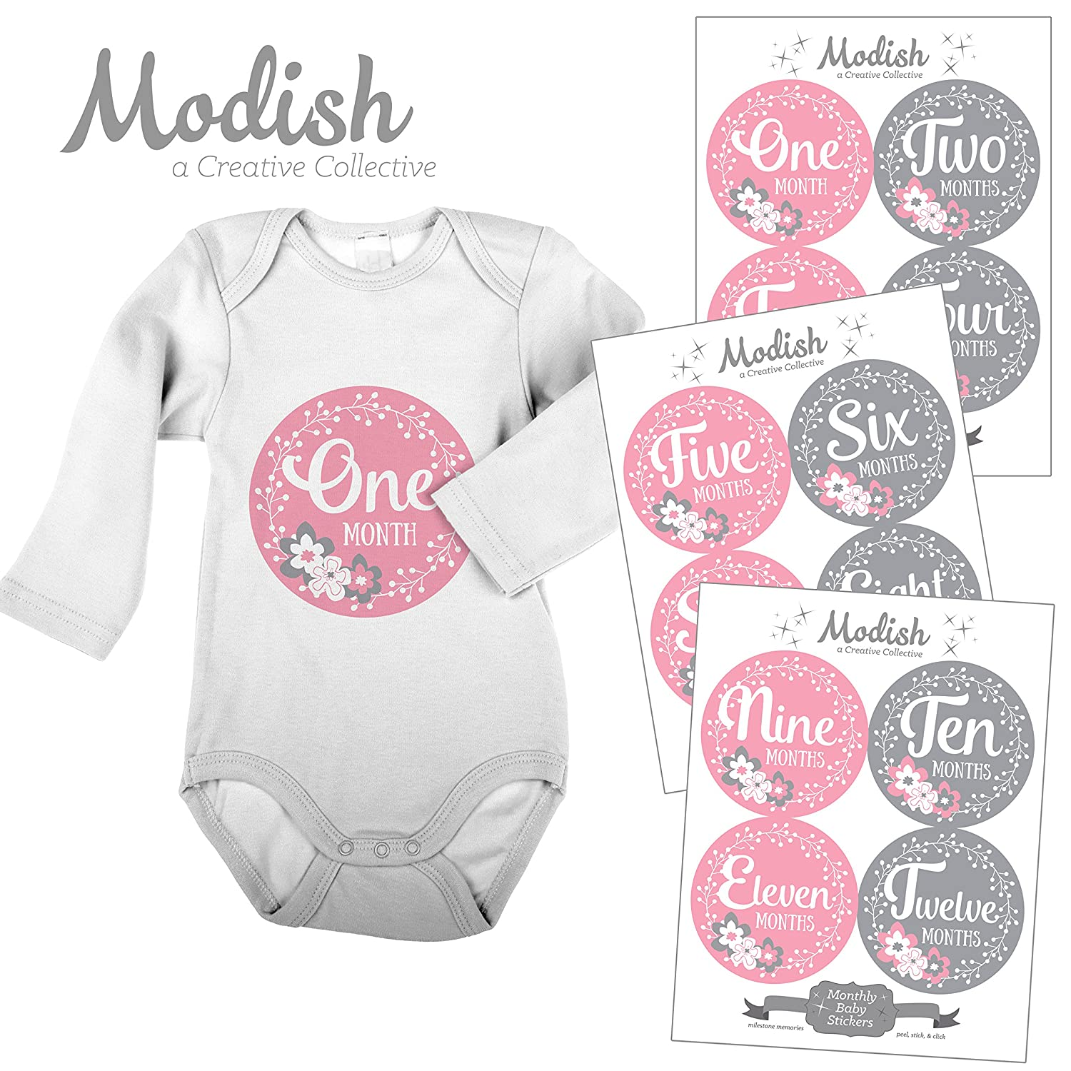 12 Monthly Baby Stickers, Pink & Gray, Flowers, Girl, Baby Belly Stickers, Baby Month Stickers, First Year Stickers Months 1-12, Pink, Grey, Baby Girl by Modish - Creative Collective   B00XH0XHJ6