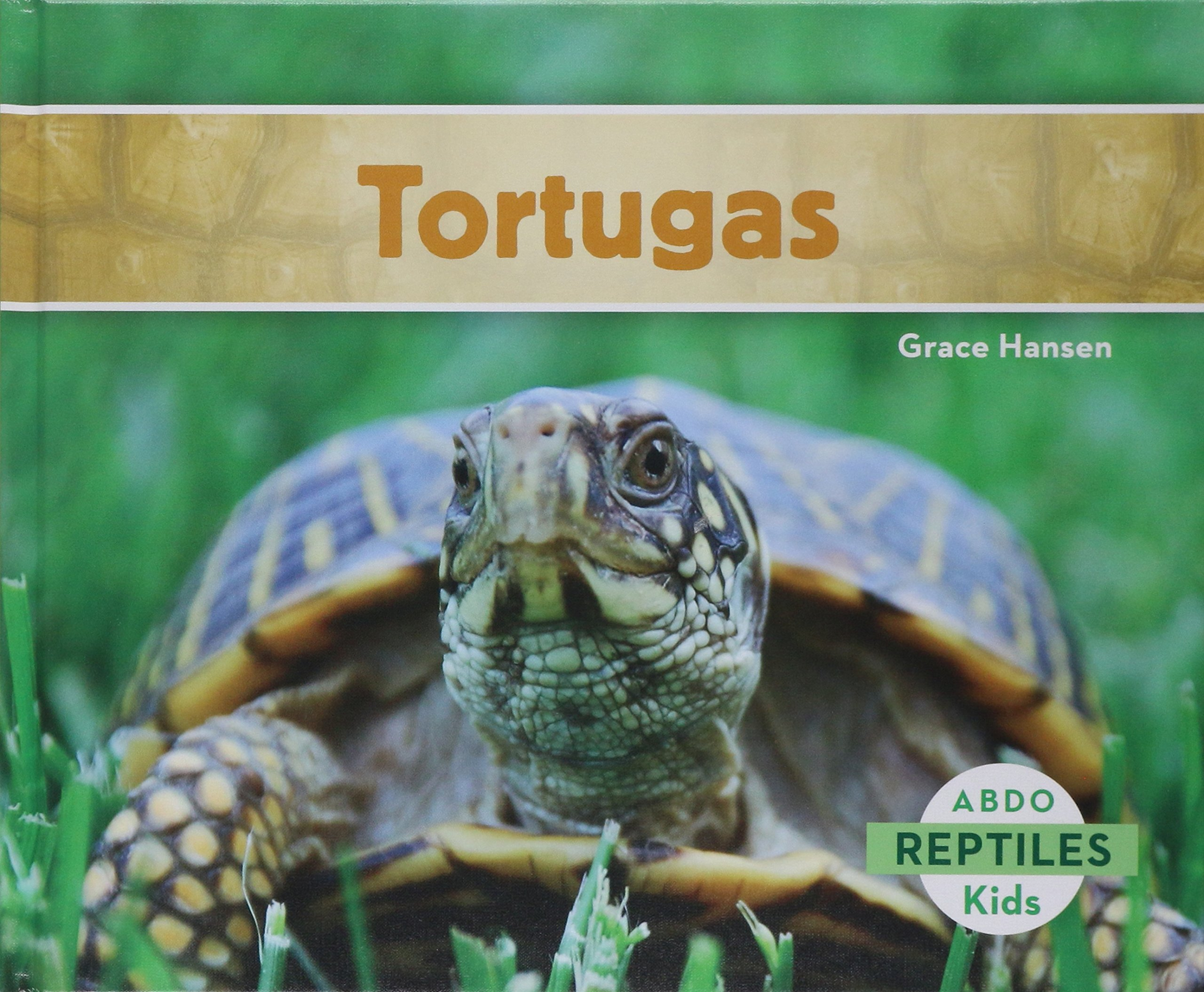 Download Tortugas (Reptiles) (Spanish Edition) pdf