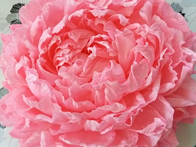 Giant Crepe Paper Peonylarge Crepe Paper Flowershome Decorwall