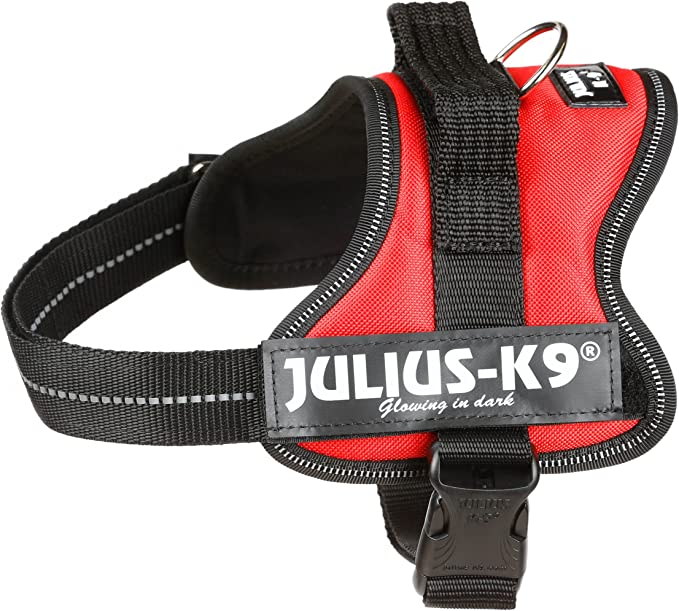 Julius-K9 Mini, 51-67 cm, Rojo: Amazon.es: Productos para mascotas